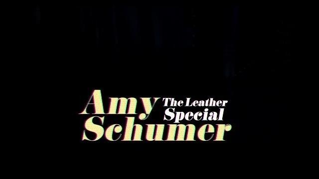 スタンドアップコメディ エイミー・シューマーのレザー製ですが何か タイトル