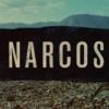 コカイン密売の歴史「ナルコス」