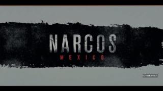 ナルコスメキシコ